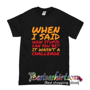 When I Said How Stupit Can You Be T shirt