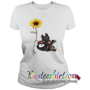 Toothless and hiccup Dragon you are my sunshine T Shirt RK07