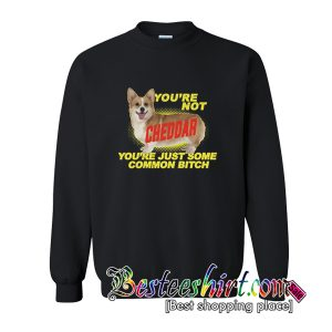 You're Not Cheddar You're Just Some Common Bitch Sweatshirt (BSM)